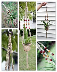 Amarena- Handmade Natural Jute Macrame Plant Hanger (Macramaking- Natural Macrame Plant Hangers) Tags: new red plants plant green love kitchen hippies forest garden cherry happy beads office nc colorful natural herbs gardening handmade oneofakind decorative character cottage creative adorable craft northcarolina funky retro cranberry gift hanging fengshui flowing organic chic etsy cheerful boho frontporch darling groovy knots hang homedecor hanger petite macrame earthday madeinusa ecofriendly accessory conversationpiece amarena hangingbasket shabbychic hangingbaskets bohochic containergardening macram planthanger upcycled planthangers hangingplanter decorativeknotting macrameplanthanger macramakin macramaking httpwwwetsycomshopmacramaking macramecord cubicleaccessories macracord naturaljute macramehangingbasket