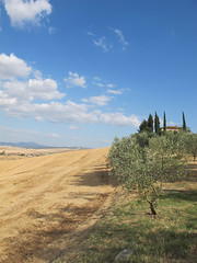 (Ira H.) Tags: italy toscana cretesenese