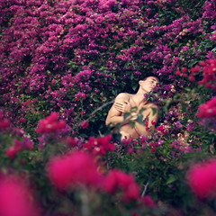 42/365 (Russell Kuch) Tags: pink flowers portrait selfportrait nature self square purple 365 lamdscape 365project