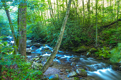 Babbling Brook (Kimberly Sue - IN) Tags: trees nature water forest rocks stream brook babblingbrook
