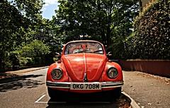 Beetle (BorisGordes) Tags: uk trip car vw beetle colourful vivi 2012 1770mm 60d