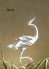 Grue / Crane