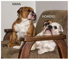 HOMERO Y NANA (kalvinandres) Tags: