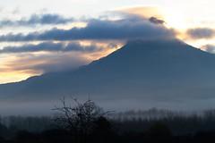 san donato (jucarsancar) Tags: espaa tree fog landscape arbol spain heaven paisaje cielo nubes monte montaa niebla navarra sandonato maeru mendigorria monteberiain jucarsancar