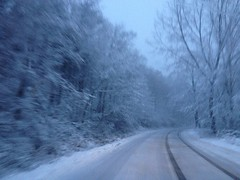 Snowy road (WORKING AMATURE) Tags: blue trees white black art moving branches ct icy curve branford snowsnowflakesroadtreestiretracksctbranford