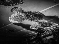 The shadow of LONDON GRAMMAR Hannah Reid on Vocals, Dot Major on Drums, Dan Rothman on Guitar on the ceiling (DRUified) Tags: california shadow usa losangeles livemusic ballroom liveperformance elreytheatre shadowontheceiling britishpop hannahreid londongrammar rebeccadruphotography dotmajor danrothman vocalisthannahreid guitaristdanrothman drummerdominicdotmajor britishpoptrio