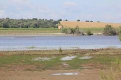 FB_IMG_1463162344870 (crijimtej) Tags: musgo arboles natural paisaje erosion laguna viejo clima relieve vegetacion arbustos arcilla moderado sedimentacion precipitaciones escasas