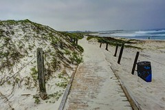 Path 2 at Asilomar Beach (joe Lach) Tags: asilomarstatebeach path sand boardwalk beach trashcan rope pacificocean montereybay pacificgrove california water waterpictorial joelach