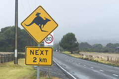 _DSC8198 (slackest2) Tags: road signs warning australia kangaroo roo