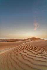 Liwa Desert (leguico) Tags: sunset landscape sand desert outdoor hdr aurorahdr