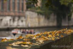 Bruges (Stefan Lambauer) Tags: autumn canal europa belgium brugge be bruges flanders blgica 2015 steenhouwersdijk stefanlambauer