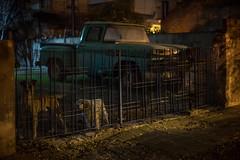 Munro de Noche (todalacosa) Tags: dog argentina truck rusty truc munro todalacosa martinbertolami