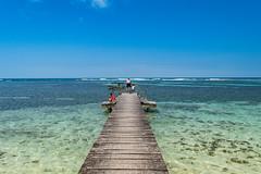 Insel Zapatilla Panama