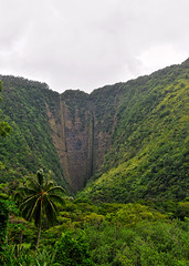 Waipio Valley - V (Anders Magnusson) Tags: nature hawaii nikon hike thebigisland steep eastcoast waipio waipiovalley andersmagnusson