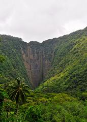 Waipio Valley - V (Anders Magnusson) Tags: nature hawaii nikon hike thebigisland steep eastcoast waipio waipiovalley andersmagnusson