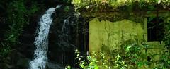 agua... (Roger S 09) Tags: asturias molino villaviciosa catarata molinos rutadelosmolinos roprofundo molndelapea