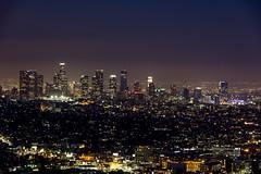 LA Confidential  #LosAngeles #Skyline #CityLights #Cityscape #Sky #SkyPorn #Urban #UrbanExplorer #Urbex #NightPhotography #NightShot #LongExposure #NightSky #Outdoors #California (kallyone) Tags: california longexposure nightphotography sky urban skyline outdoors losangeles cityscape nightshot citylights nightsky urbex skyporn urbanexplorer