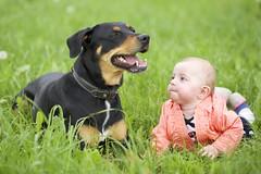 two cute girls (proefdier) Tags: friends dog baby cute green love grass child saxony sunny canine cutie hund sachsen gras freunde erzgebirge waldkirchen dobermannrottweilermix