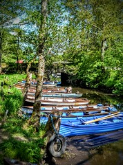 Canoes at Ross Castle (Gemma_Marie_) Tags: trees ireland summer lake green castle june river out boats ross day outdoor lakes kerry adventure canoes killarney 2016