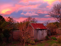 Backyard Sunset (elliott.lani) Tags: sunset color colour beautiful garden outdoors bright rustic shed hut fred weathered colourful lani allrightsreserved sheds weatherboard shearingshed pickershut fredsshed elliottlani lanielliott applepickershut