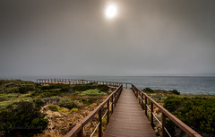 Misty evening (Mika Laitinen) Tags: canon7dmarkii europe portugal tokina1116mm beach cloud fog landscape mist nature ocean outdoor rock sea seascape shore sky sun water wideangle odemira beja pt