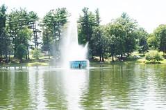 11845138_10153099667877076_8164094756526074274_o (jmac33208) Tags: park new york roses rose garden central schenectady