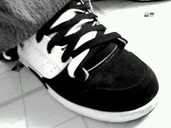 DVS (BrokeBoysPhotos) Tags: white black feet foot shoes skating sneakers tennis skate kicks skater sk8 sk8r sneaks flickrandroidapp:filter=nyc
