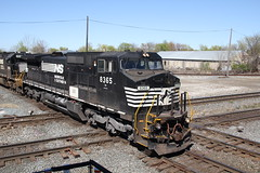 Norfolk Southern D8-40CW 8365 (capsfan1222) Tags: railroad train canon diesel ns sigma locomotive ge generalelectric norfolksouthern marionohio dash840cw d840cw sigma1750 canoneos60d