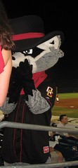 Rascal Raccoon, Modern Woodmen Park, Davenport (Iowa), 19 August 2010 (milanite) Tags: baseball iowa ballparks minorleagues midwestleague davenportiowa modernwoodmenpark quadcitiesriverbandits scottcountyiowa