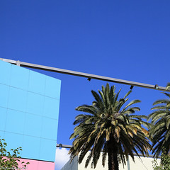 ― Urban oasis (roB_méL) Tags: urban architecture australia palm absolut geometrie melbournemuseum urbangeometry archittetura artonthestreets geometriegeometry creattività graphicarchitecture architectureinmelbourne