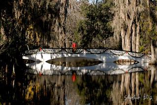 Holiday Bridge