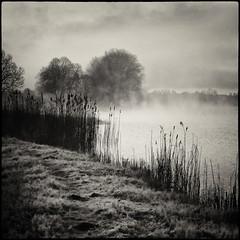 Foggy morning (warmianaturalnie) Tags: morning white mist lake black water fog sunrise square pond poland polska woda mgła warmia jezioro wschód