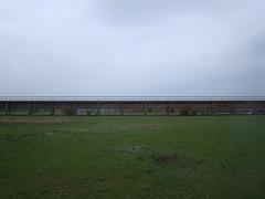 Meinerswijk (RianneSchonberger) Tags: sky grass brigde