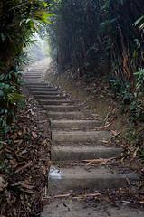 HK_2012 (Peter_Gawel) Tags: hk hongkong trail staircase wilsontrail