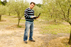 City man working with a laptop in Farm next to a olive tree (Ricsilva76) Tags: city man tree nature farm laptop farming olive