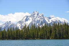 EEUU -Wyoming - Grand Teton NP (eduiturri) Tags: wyoming grandtetonnationalpark eeuu