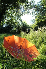 Green grass, orange umbrella 1 by Joybot, on Flickr