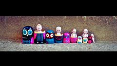 210/366 - Matryoshka Family (Randi Rains Johnson) Tags: stilllife baby cute vintage fun toy miniature doll child play antique fat small bisque norman creepy belly german tiny owl chubby russian curlyhair 2012 366 nestingdoll blueandpurple 3651 matryoshkadoll