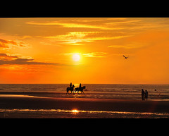 Time To Say Goodbye ...... (*Lie ... on / off ! ...) Tags: sunset sea horses mer zonsondergang meer sonnenuntergang belgium seagull belgi zee westvlaanderen mwe pferde meeuw mouette coucherdesoleil oldcouple chevaux paarden oostduinkerke vieuxcouple altesehepaar vlaamsewestkust oudkoppel ikhouvandezeeendeonvergetelijkemomentenvandezonsondergang