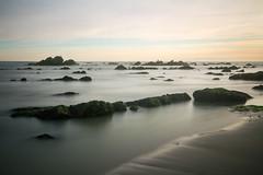 La mouette (Ludovic Cadet Photo) Tags: longexposure sea mer seascape beach water canon rocks eau day clear 7d plage mouette rochers sigma1020 poselongue bw110