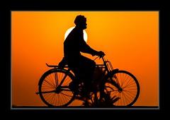 IMG_2111 (Awais.M (1M views+ Views Thank you )) Tags: pakistan sunset sun silhouette punjab backlighting sadiqabad peoplesilhouette canoneos60d sigmaapo70200mmf28exdg mygearandme mygearandmepremium sigma70200exdgapo awaism