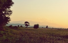 emptiness (Samir Cabbarov) Tags: trees sunset mountain field yellow landscape emptiness nikkor35mmf18g nikond7000