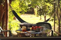 Dame un beso de desayuno (Breakfast) (Pina Paulina) Tags: chile summer breakfast canon sommer verano desayuno ef50mmf18ii frhstuck 1850mm canon1100 chilesudamerica canon1100d