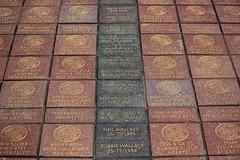 Memories, birthdays. (Graham`s pics) Tags: party brick history sport paradise stadium celtic title venue sportsman parkhead footballer celticpark celticbrick