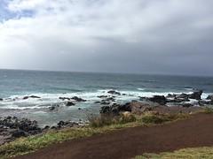 IMG_0490 (Ourisman Travel) Tags: hawaii maui wailea hotelwailea