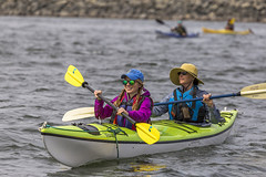 Small 800px double kayak during Indigenous Day Flotilla at Break Free PNW 2016 Photo taken by John Duffy 27035963921_ca4888898b_c (Backbone Campaign) Tags: water justice washington energy kayak break action politics protest creative paddle shell free social demonstration oil change wa environment activism anacortes campaign pnw refinery climatechange climate tesoro artful backbone renewable refineries 2016 kayaktivist kayaktivism breakfreepnw