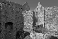 Ha Ha Tonka Castle Ruin (joeqc) Tags: blackandwhite bw white black castle blancoynegro monochrome mono sony mo missouri ozarks hahatonka greytones rx100 oncewashome rx100ii rx100m2 rx100mii