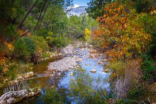 Contrastes otoñales Río Bororsa - Sierra de Cazorla