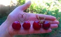 Love of cherries (khanimmukhtarova) Tags: art love fruits fruit cherry cherries lucky foodart gilas kiraz meyve  meyv