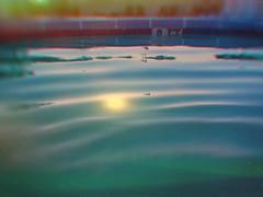 Sunset Swim (BLACK EYED SUZY) Tags: pool swim sunset tadaa afterlight water summertime swimming summer